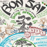 Click to enlarge image bonsai-infographic-cover.jpg