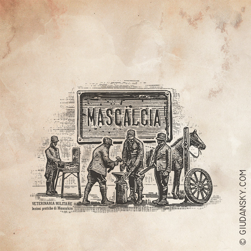 Maniscalcia illustrata