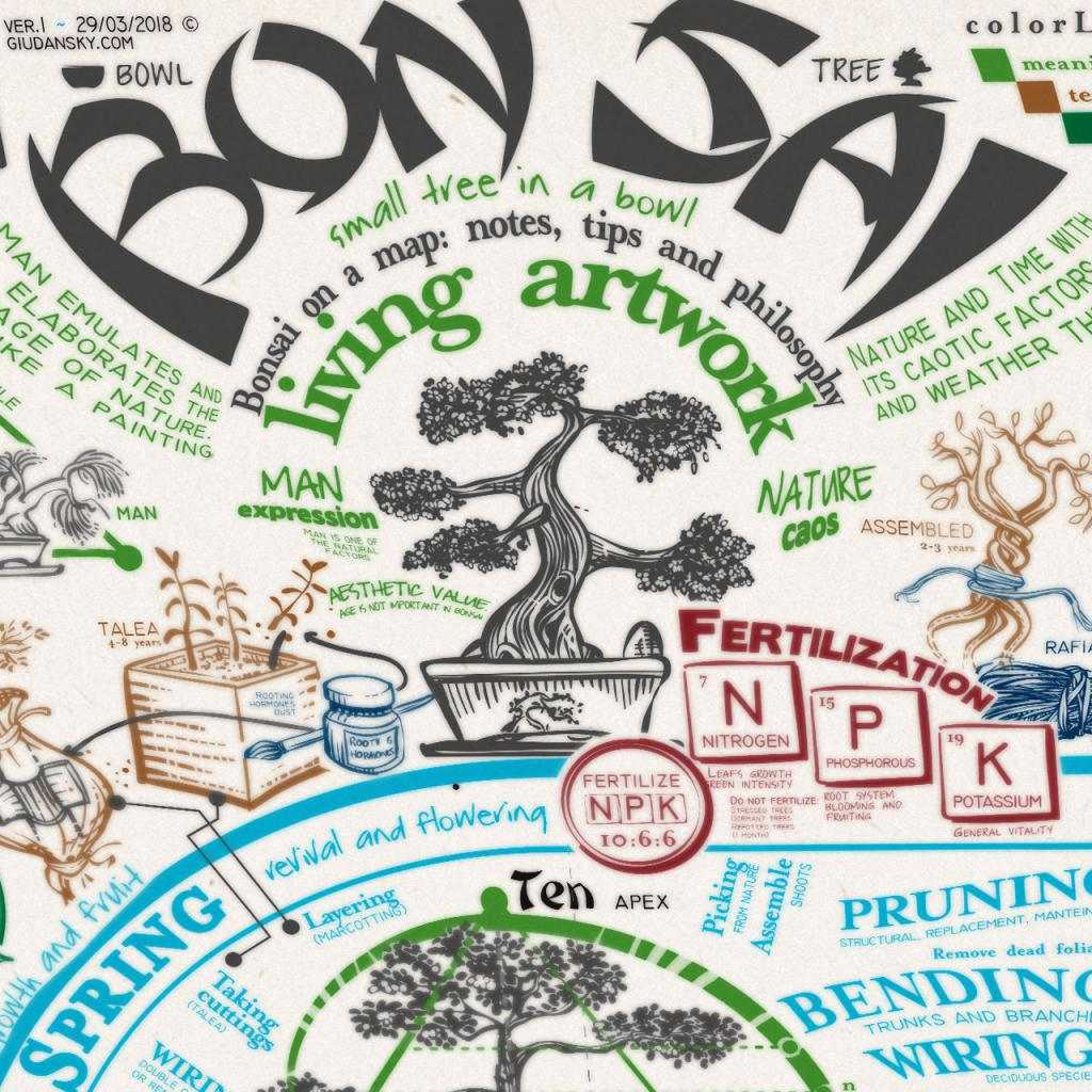 Bonsai on a poster